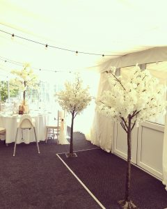 5ft Blossom Trees - £15.00
